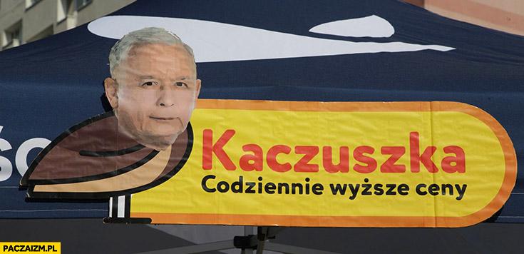 Kaczyński kaczuszka codziennie wyższe ceny przeróbka logo biedronki