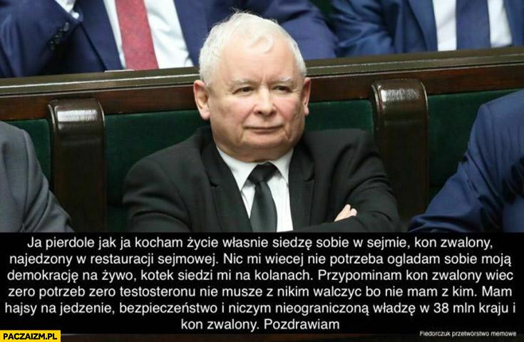 Kaczyński kocham życie siedzę sobie w sejmie koń zwalony, nic mi więcej nie potrzeba