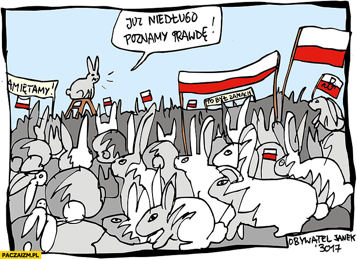 Kaczyński na miesięcznicy Smoleńskiej króliki już niedługo poznamy prawdę Obywatel Janek
