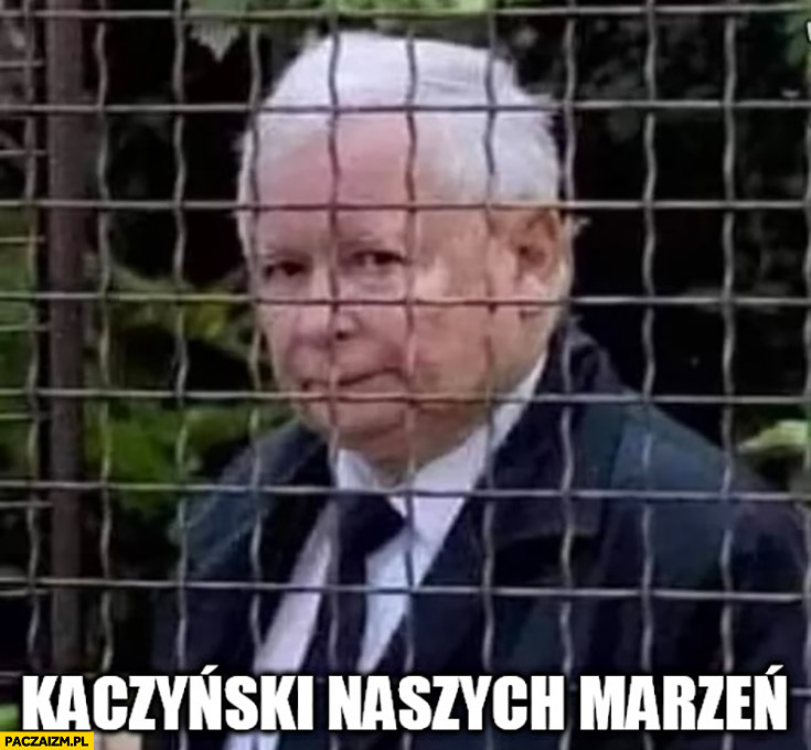 Kaczyński naszych marzeń za kratami ogrodzenie