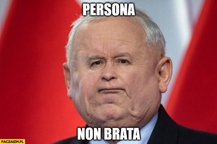 Kaczyński persona non brata przeróbka twarzy