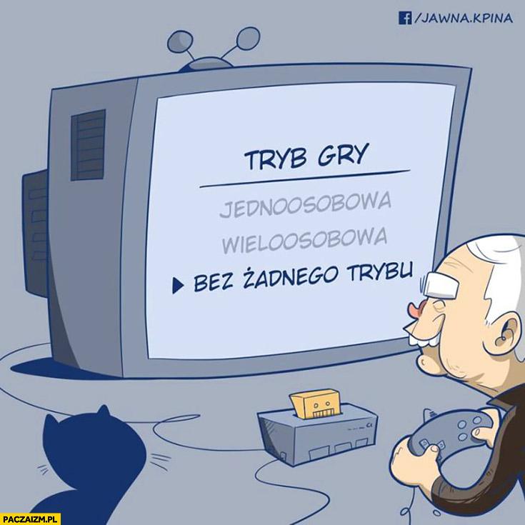 Kaczyński tryb gry: bez żadnego trybu, jednoosobowa, wieloosobowa