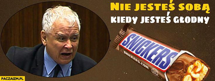Kaczyński w sejmie Snickers nie jesteś sobą kiedy jesteś głodny zły zdenerwowany wkurzony