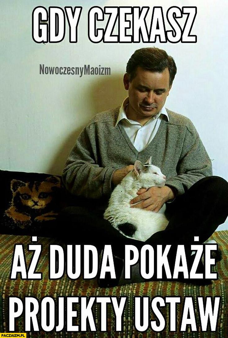 Kaczyński z kotem gdy czekasz aż Duda pokaże projekty ustaw