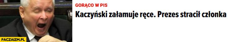 Kaczyński załamuje ręce prezes stracił członka