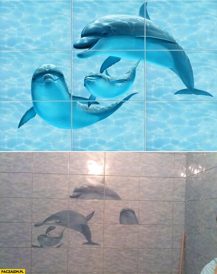 Kafelki z delfinami fail źle ułożone