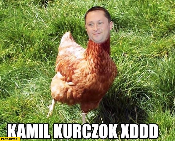 Kamil kurczok Durczok przeróbka kura kurczak