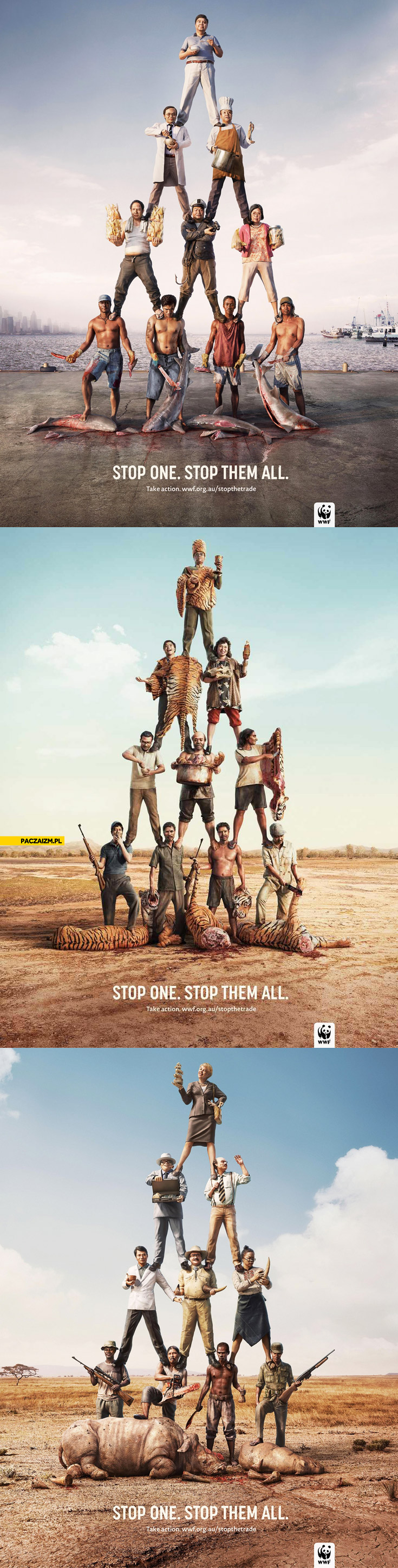 Kampania WWF zatrzymaj jednego zatrzymaj wszystkich stop one stop them all
