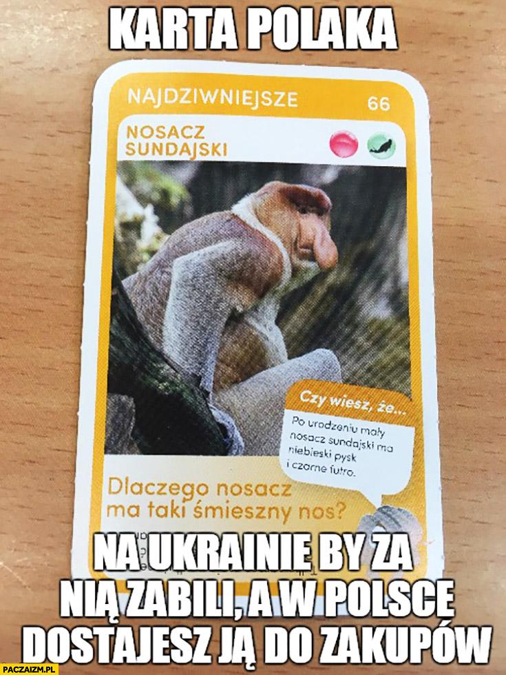 Karta Polaka na Ukrainie by za nią zabili, a w Polsce dostajesz ją do zakupów nosacz sundajski typowy Polak