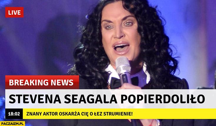 Kayah Stevena Seagala popierdzieliło breaking news znany aktor oskarża Cię o łez strumienie