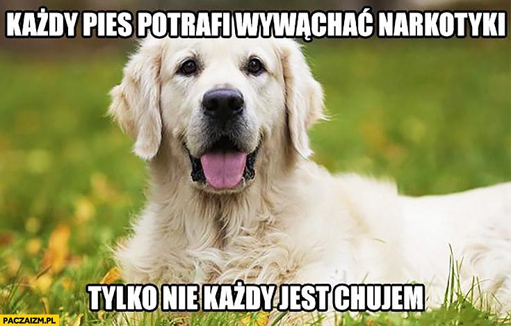 Każdy pies potrafi wywąchać narkotyki tylko nie każdy jest chamem