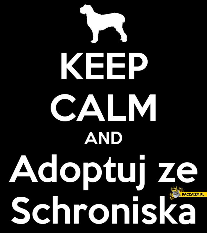 Keep calm and adoptuj ze schroniska