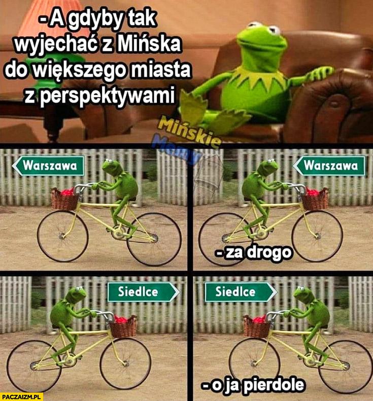 Kermit a gdyby tak wyjechać z Mińska do większego miasta z perspektywami? Warszawa za drogo, Siedlce o ja pierdziele