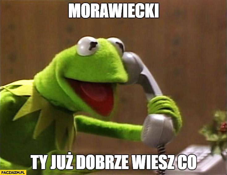 Kermit dzwoni Morawiecki Ty już dobrze wiesz co