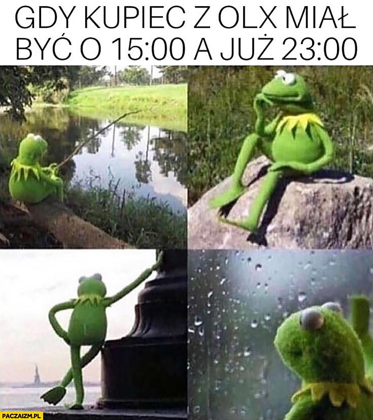Kermit gdy kupiec z olx miał być o 15 a już 23