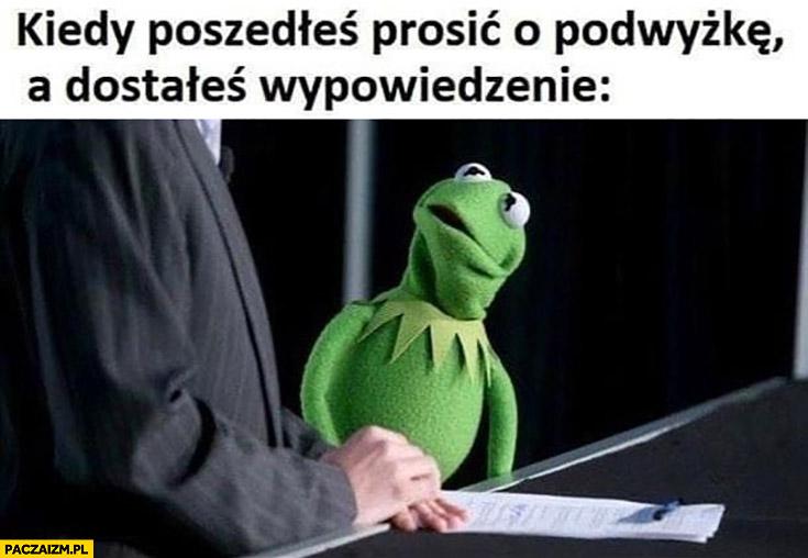 Kermit kiedy poszedłeś prosić o podwyżkę a dostałeś wypowiedzenie