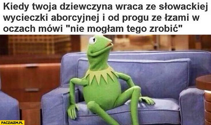 Kermit kiedy Twoja dziewczyna wraca ze słowackiej wycieczki aborcyjnej i od progu ze łzami w oczach mówi nie mogłam tego zrobić