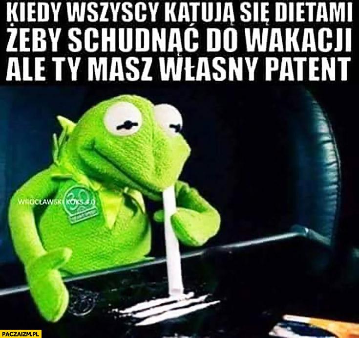 Kermit kiedy wszyscy katują się dietami żeby schudnąć do wakacji ale Ty masz własny patent wciąga ścieżkę