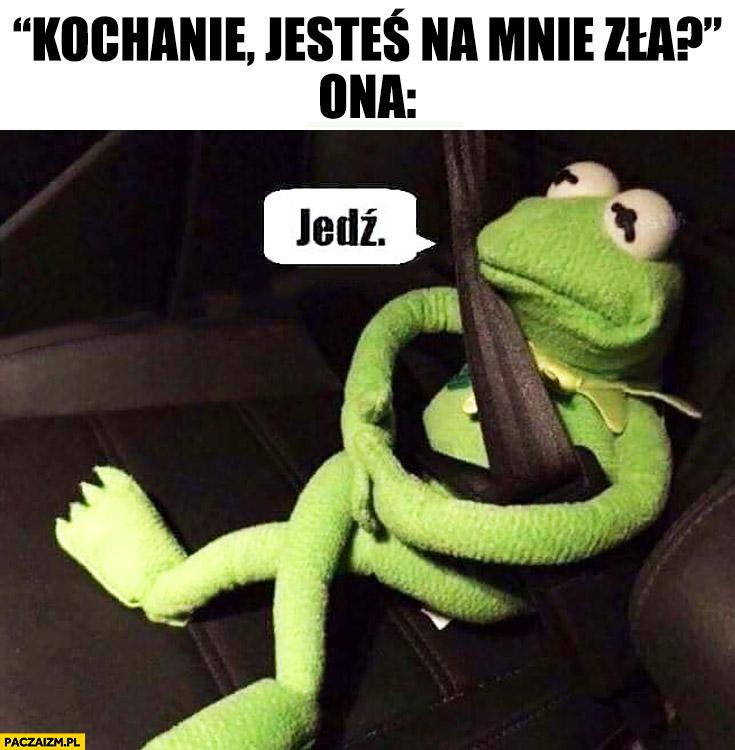 Kermit kochanie jesteś na mnie zła? Ona: jedź