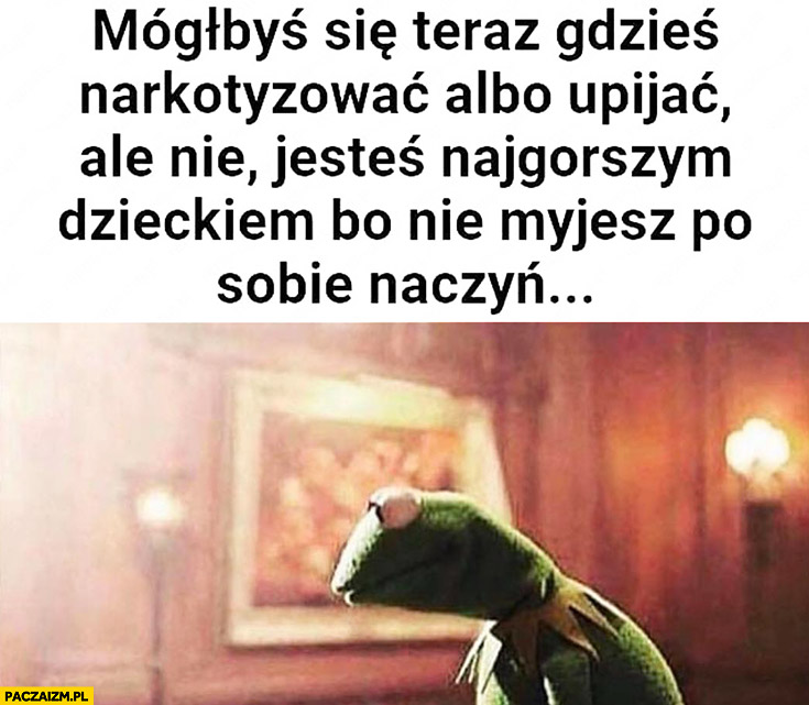 Kermit mógłbyś się teraz gdzieś narkotyzować albo upijać, ale nie, jesteś najgorszym dzieckiem bo nie myjesz po sobie naczyń