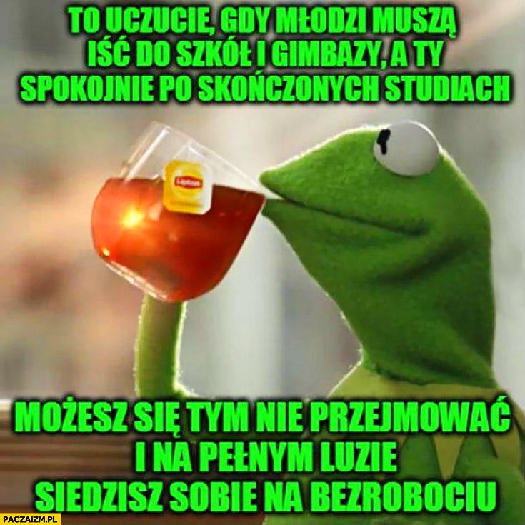 Kermit to uczucie gdy młodzi muszą iść do szkoły a Ty spokojnie po studiach siedzisz sobie na bezrobociu