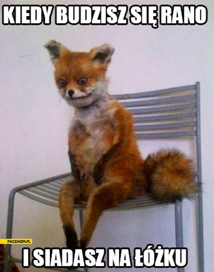 Kiedy budzisz się rano i siadasz na łóżku