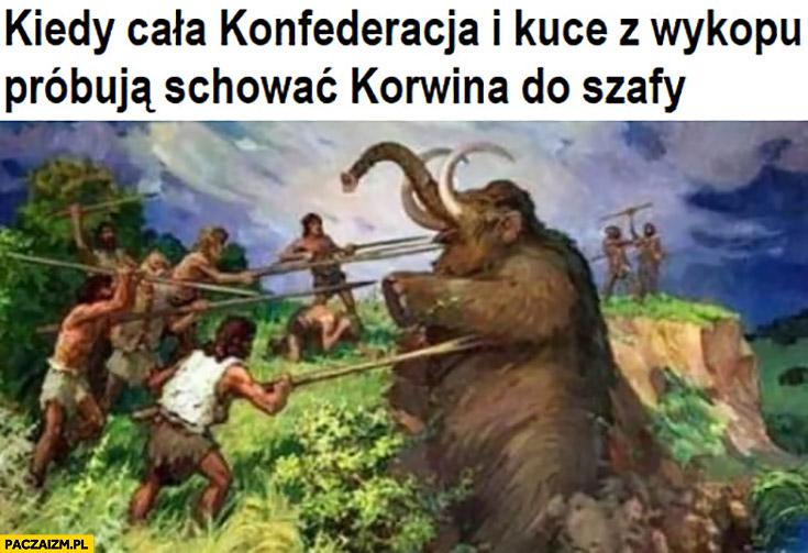Kiedy całą Konfederacja i kuce z wykopu próbują schować Korwina do szafy walka z mamutem