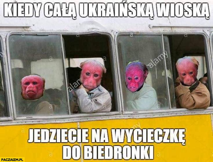 Kiedy cała Ukraińska wioska jedziecie na wycieczkę do Biedronki nosacz małpa