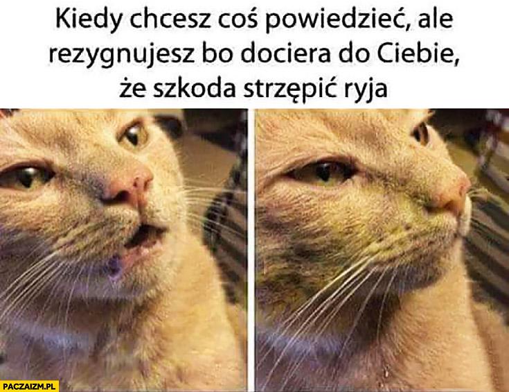 Kiedy chcesz coś powiedzieć, ale rezygnujesz bo dociera do Ciebie, że szkoda strzępić ryja kot