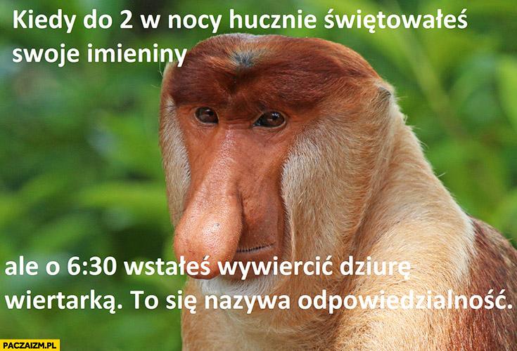 Kiedy do 2 w nocy hucznie świętowałeś swoje imieniny ale o 6:30 wstałeś wywiercić dziurę wiertarką to się nazywa odpowiedzialność typowy Polak nosacz małpa