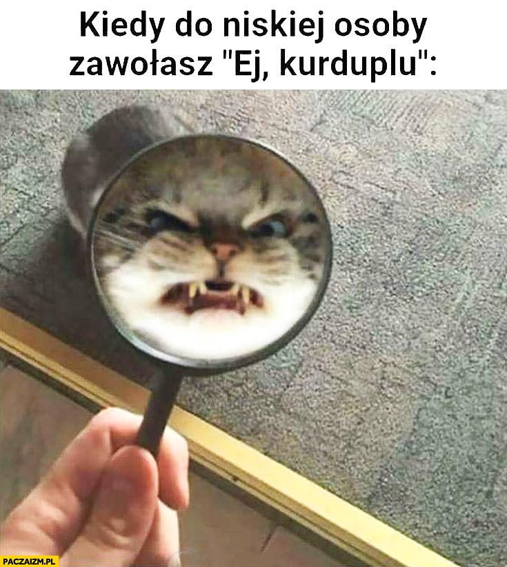 Kiedy do niskiej osoby zawołasz ej kurduplu zły kot
