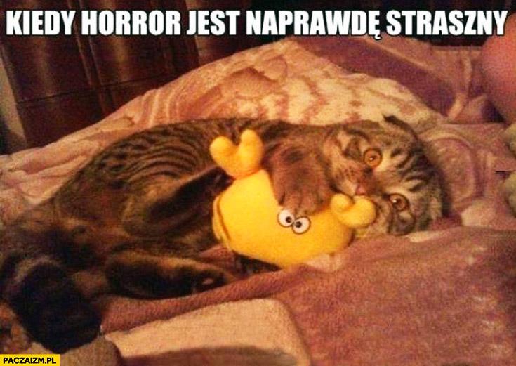 Kiedy horror jest naprawdę straszny przestraszony kot