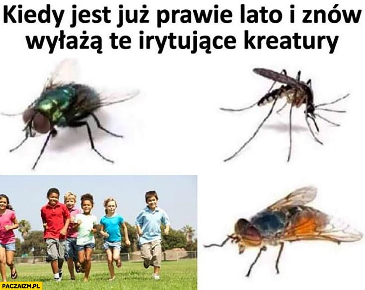 Kiedy jest już prawie lato i znów wyłażą te irytujące kreatury muchy komary dzieci