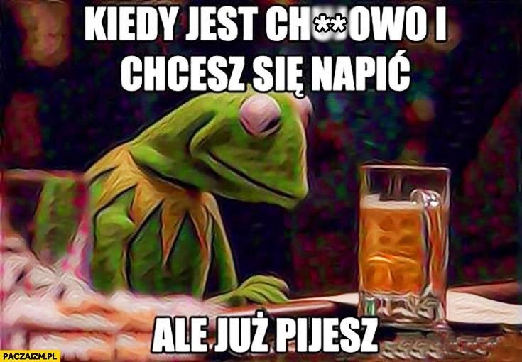 Kiedy jest lipnie i chcesz się napić ale już pijesz Kermit