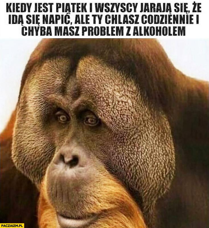 Kiedy jest piątek i wszyscy jarają się, że idą się napić, ale Ty chlasz codziennie i chyba masz problem z alkoholem smutna małpa