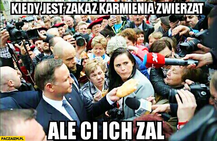 Kiedy jest zakaz karmienia zwierząt ale ci ich żal Andrzej Duda ludzie wyborcy