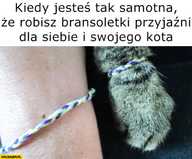 Kiedy jesteś tak samotna, że robisz bransoletki przyjaźni dla siebie i swojego kota