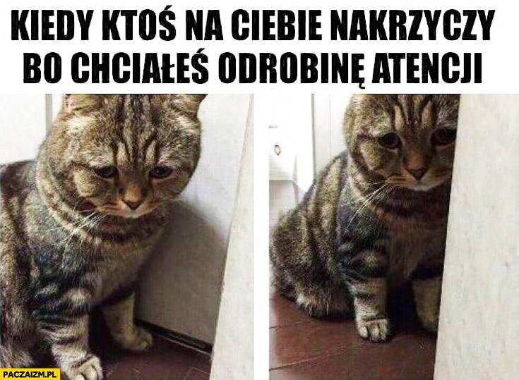 Kiedy ktoś na Ciebie nakrzyczy bo chciałeś odrobinę atencji smutny kot