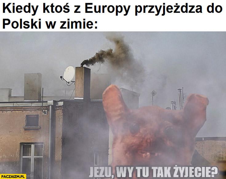 Kiedy ktoś z Europy przyjeżdża do Polski w zimie smog, Jezu wy tu tak żyjecie?