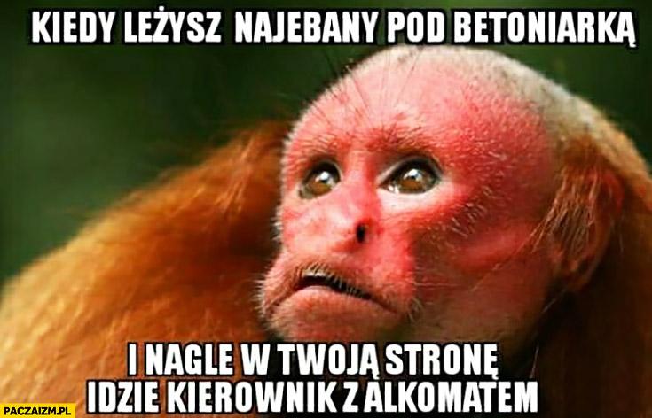 Kiedy leżysz nawalony pod betoniarką i nagle w Twoją stronę idzie kierownik z alkomatem małpa Ukrainiec