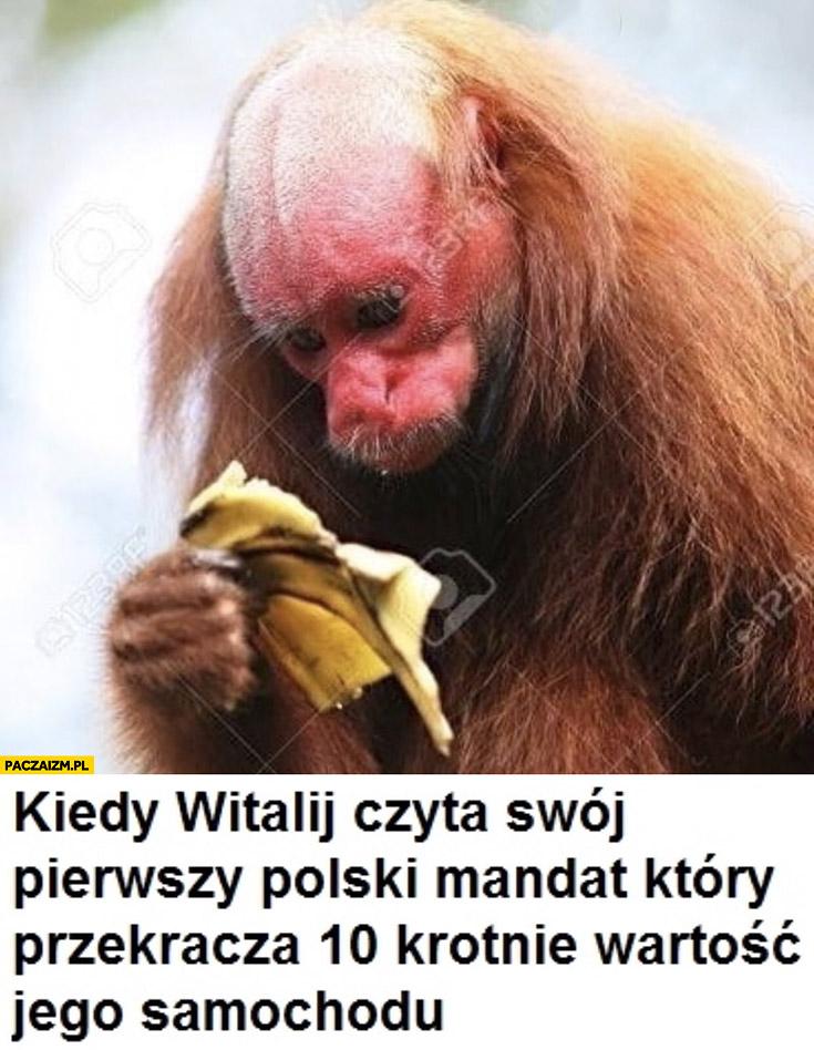 Kiedy małpa Ukrainiec czyta swój pierwszy polski mandat, który przekracza 10-krotnie wartość jego samochodu