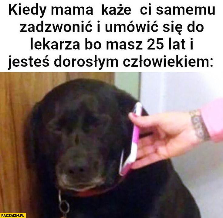 Kiedy mama każe Ci samemu zadzwonić i umówić się do lekarza bo masz 25 lat i jesteś dorosłym człowiekiem smutny pies
