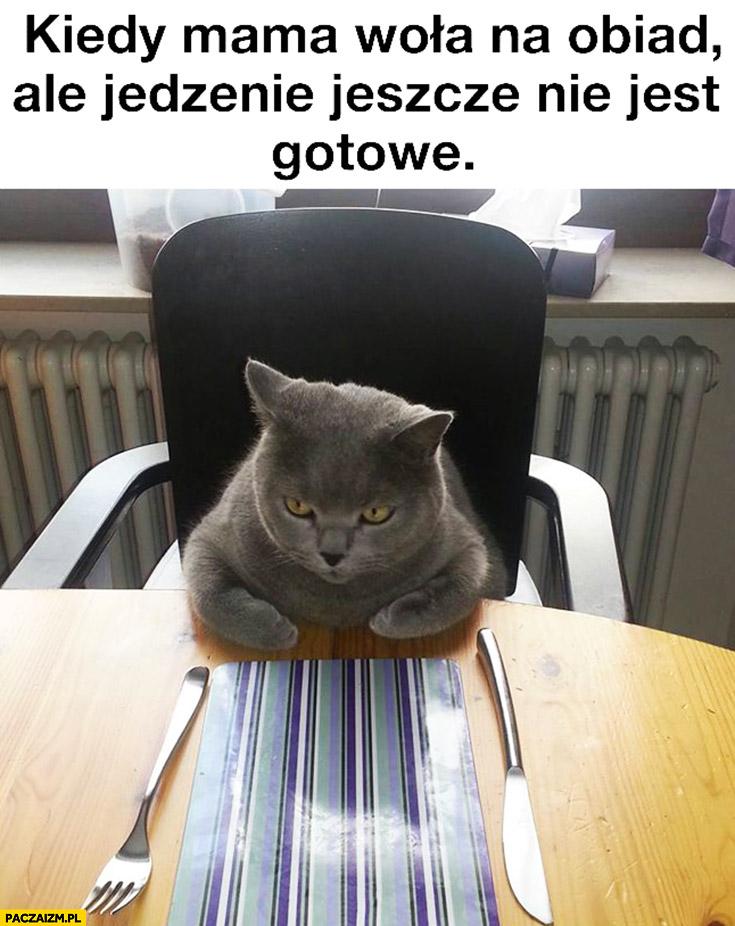 Kiedy mama woła na obiad ale jedzenie jeszcze nie jest gotowe kot