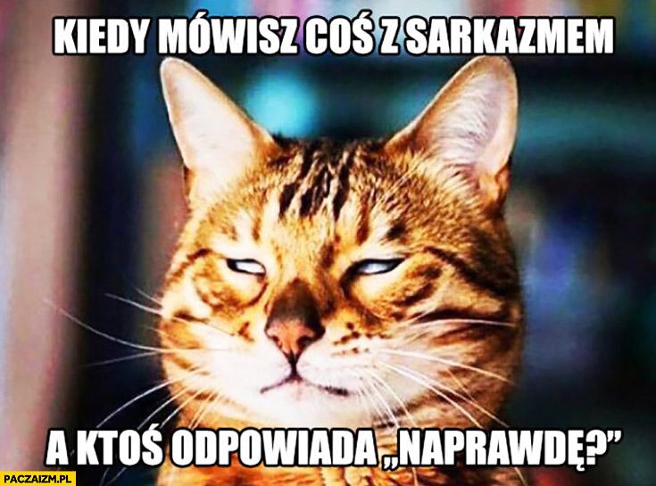 Kiedy mówisz coś z sarkazmem a ktoś odpowiada naprawdę kot