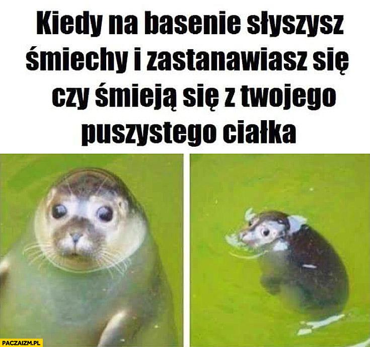 Kiedy na basenie słyszysz śmiechy i zastanawiasz się czy śmieją się z Twojego puszystego ciałka foka foczka