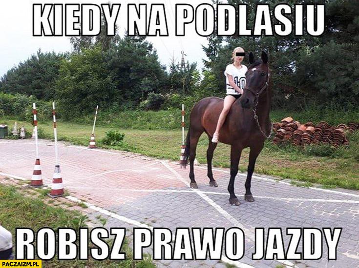 Kiedy na Podlasiu robisz prawo jazdy konno na koniu rękaw na placu manewrowym