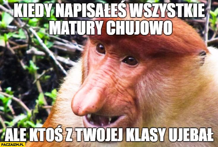 Kiedy napisałeś wszystkie matury kijowo ale ktoś z Twojej klasy uwalił typowy Polak nosacz małpa