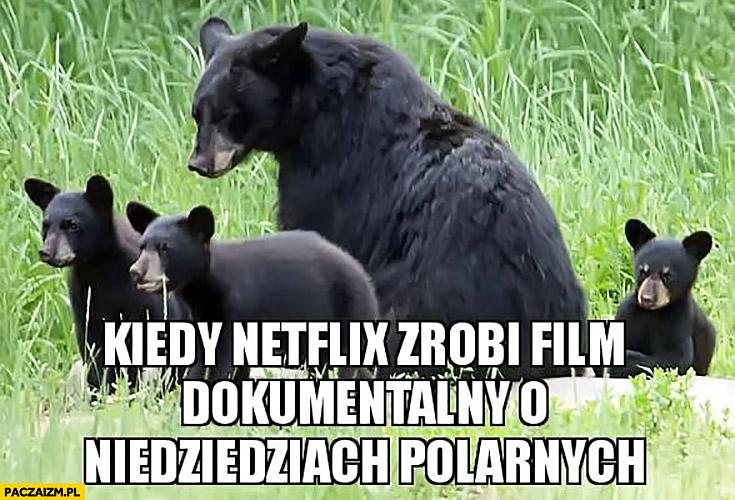 Kiedy Netflix zrobi film dokumentalny o niedźwiedziach polarnych tak naprawdę brunatne