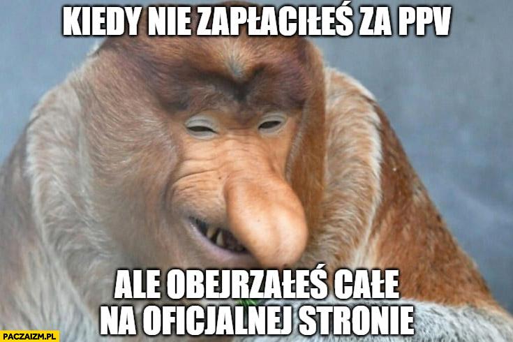 Kiedy nie zapłaciłeś za PPV ale obejrzałeś całe na oficjalnej stronie typowy Polak nosacz małpa