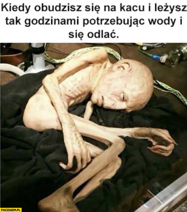 Kiedy obudzisz się na kacu i leżysz tak godzinami potrzebując wody i się odlać obcy alien ufo